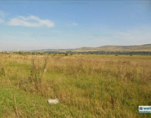 Land for sale in Cluj Napoca, zone Floresti