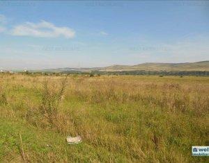 Vanzare teren 9600 mp, situat in Floresti, zona A.Iancu