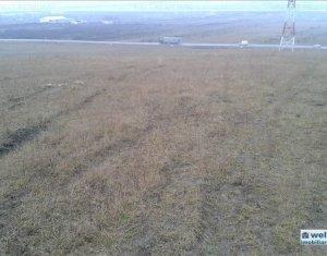 Vanzare teren industrial, 5800 mp,  zona Tetarom II - Emerson