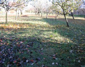Land for sale in Feleacu