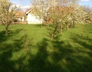 Land for sale in Feleacu