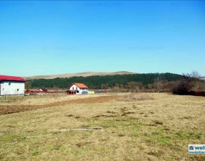 Land for sale in Gilau