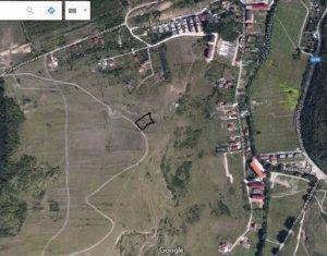Vanzare teren intravilan, 2500 mp, zona Polus Center