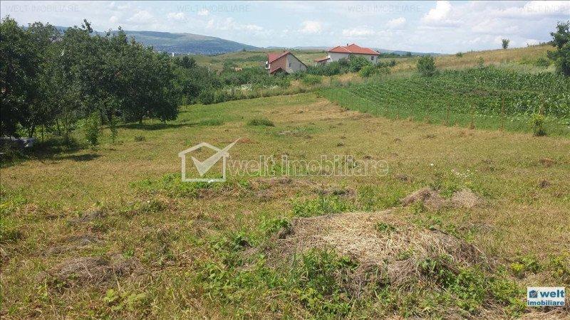 Terrain à vendre dans Cluj Napoca, zone Borhanci