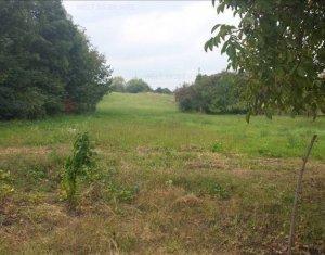 Land for sale in Cluj-napoca, zone Zorilor