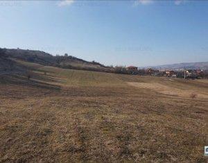 Vanzare teren pretabil constructii case, 4000 mp, Floresti
