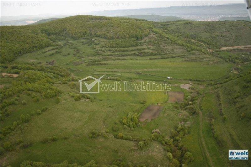 Vanzare teren 98.520 mp, cu proiect de case situati in satul Tauti