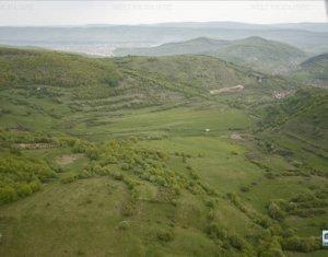 Vanzare teren 98.520 mp , cu proiect de case situati in Satul Tauti