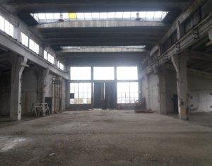 Hala 1700mp + birouri,  platforma betonata TIR, pod rulant 16to zona Baciu