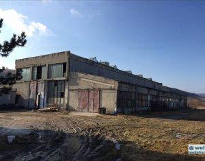 Espace Industriel à louer dans Cluj Napoca, zone Baciu