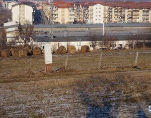 Terrain à vendre dans Cluj-napoca, zone Floresti