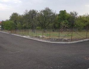 Terrain à vendre dans Cluj Napoca, zone Andrei Muresanu