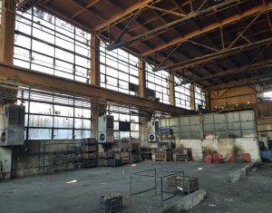 Inchiriere hala depozitare sau productie 865mp, H=8m, zona Dedeman Cluj