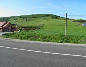 Teren intravilan 23.500 mp pentru investitie, zona Mera- Cluj, POT 30%
