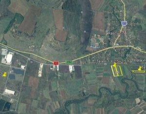 Teren Industrial 5h cu PUZ aprobat pentru hale in Rascruci POT 11.64% CUT 0.50