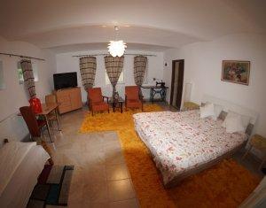 Apartament spatios, 1 camera la casă cu grădină, 5 min UMF pentru 1-3 persoane