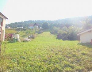 Vanzare teren pentru investitie in Floresti
