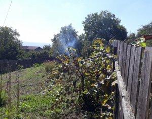 Teren pentru constructie casa, 800 mp, zona linistita si frumoasa, Dambul Rotund