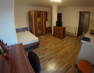 Apartament de 1 camera, Hasdeu
