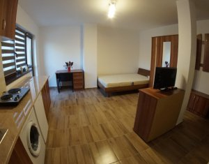 Apartment 1 rooms for rent in Cluj Napoca