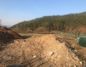 Teren superb in Manastur, zona Roata, la liziera padurii, 1500 mp