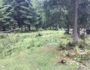 Vanzare teren 1415 mp situat in zona Valea Ierii zona Caps