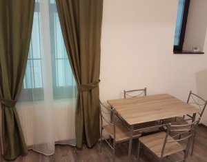 Studio for rent in Cluj Napoca, zone Centru