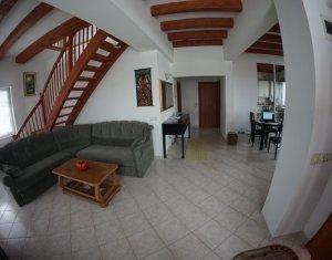 Maison 6 chambres à vendre dans Cluj Napoca, zone Apahida