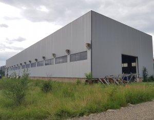 Teren industrial 5.000mp, hala 1750mp, si cladire de birouri, Blvd Muncii