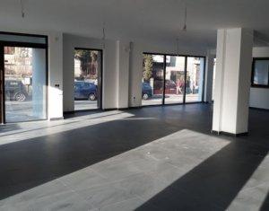 Inchiriere spatiu comercial/birou, 130 mp sau integral 1450 mp, finisat, Centru