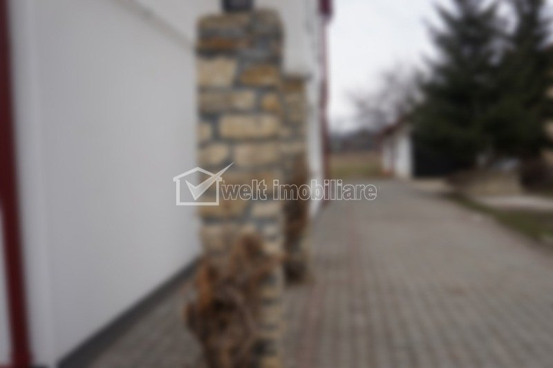 Vila de inchiriat, 190 mp, 2700 mp teren, zona spitalului Clujana