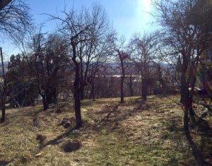 Teren pt case sau duplex impartit in 4 parcele, str Uliului, Grigorescu