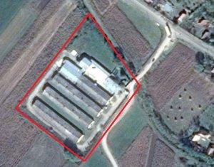 Teren industrial 10.800 mp, 4 Hale si corp administrativ, Comuna Suatu
