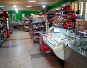 Espace Commercial à louer dans Cluj Napoca, zone Gheorgheni