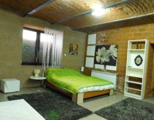 Apartament de inchiriat 2 camere, Ultracentral, zona strazii Napoca