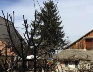Oferta foarte interesanta! Casa veche, teren 565 mp, zona Titulescu