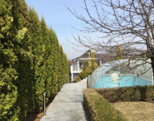 Casa cu gradina generoasa de 1700 mp, garaj, piscina, foisor, Faget