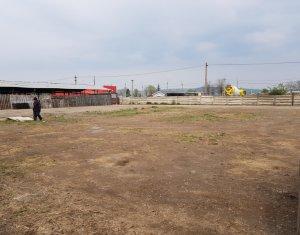 Platforma industriala 6.150mp cu utilitati, de inchiriat, zona Aeroport!