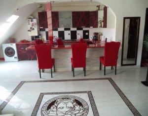 Vindem apartament 2 camere, mansarda, strada Porii, Floresti