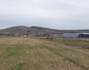 Teren de vanzare, pentru hala in parc industrial, 14.608 mp, Sannicoara, Apahida