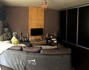 Apartament 2 camere, mobilat, strada Tineretului