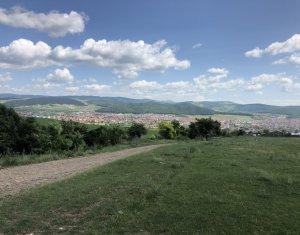 Vanzare teren 2800 mp in zona Dealul de Jos