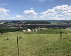 Vanzare teren 1800 mp, situat in zona Dealu de jos
