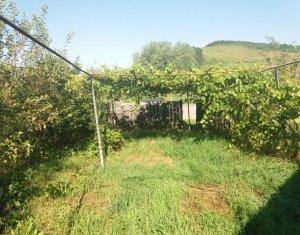 Land for sale in Vultureni