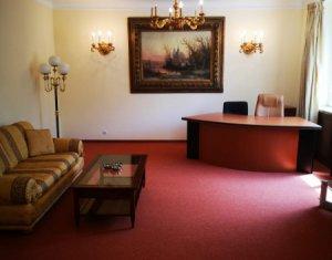 Apartament exclusivist, vintage lux, curte, 2 camere, Grigorescu