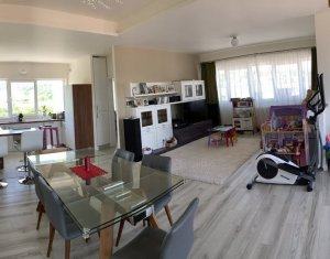Apartment 4 rooms for rent in Cluj-napoca, zone Borhanci