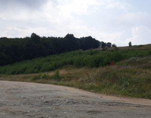 De vanzare teren-padure, Feleacu