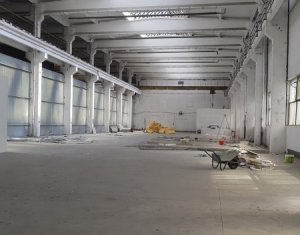 Inchiriere hala 1200mp, pod rulant, acces TIR, zona Corneliu Coposu