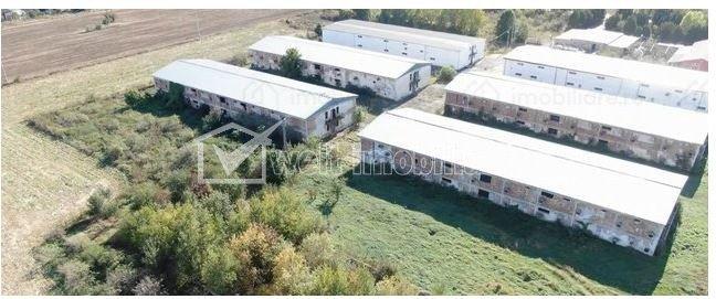 Complex de 4 hale P+1E, Turda, Zona Industriala, 240000 euro bucata