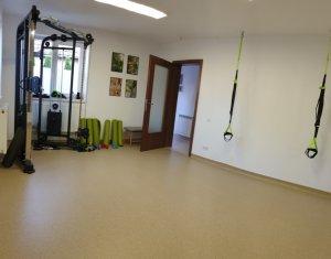 Office for rent in Cluj-napoca, zone Grigorescu